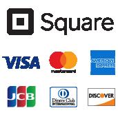 Square/Visa/mastercard/AMERICAN EXPRESS